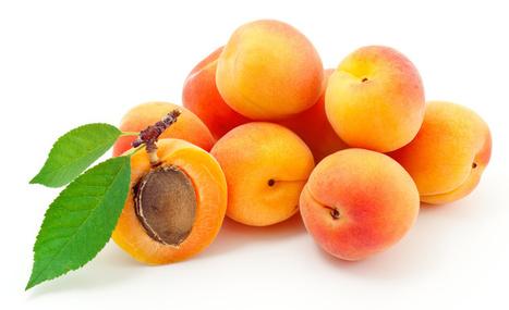 L'abricot riche en vitamines C et A - Jean-Marc FRAICHE | alternative-sante | Scoop.it