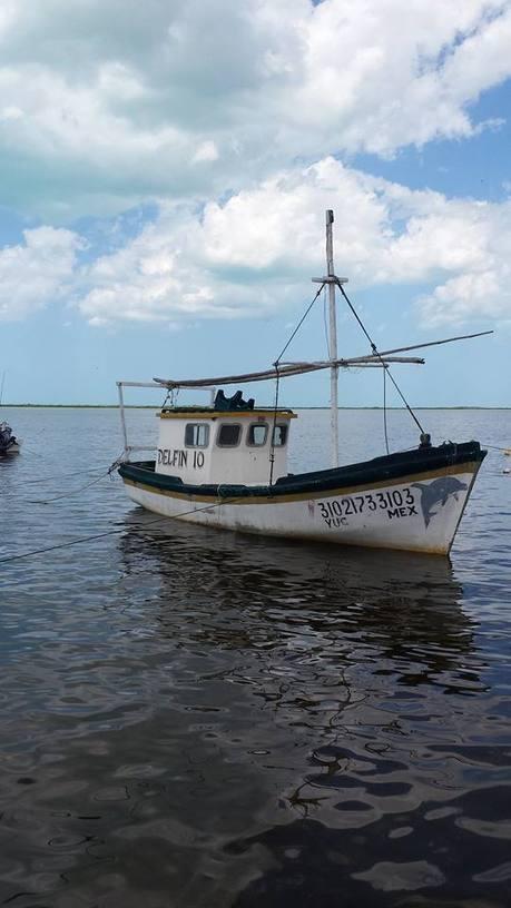 San Felipe, ejemplo vivo de lo que significa ser comunidad | Pepineros Península de Yucatán | Scoop.it