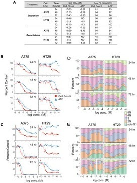 A Simple High-Content Cell Cycle Assay Reveals Frequent Discrepancies between Cell Number and ATP and MTS Proliferation Assays | High Content Screening | Scoop.it