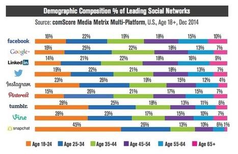 [Infographie] Démographie des 9 réseaux sociaux les plus populaires par classe d'âges | Ma veille - Technos et Réseaux Sociaux | Scoop.it
