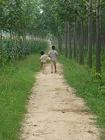 The Impact of Rural-Urban Migration on Children Left Behind ... | Child Welfare in Europe and China | Scoop.it