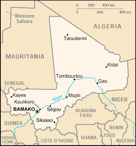 In Mali, Forces Backed by UN, France, and Obama Slaughter Civilians | MN News Hound | Scoop.it