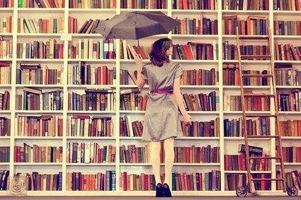 Bibliotecas e livros: condenados? | Blog do Ronaldo | read it | Scoop.it
