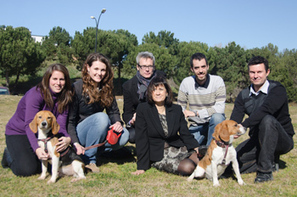UAB researchers completely cure type 1 diabetes in dogs  with a single session of gene therapy | Amazing Science | Scoop.it
