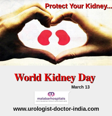 World Kidney Day 13 march 2014 .....   Urologist Doctor India   Scoop.it