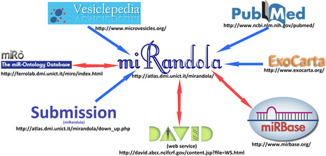miRandola: The Extracellular / Circulating microRNA Database | Bio-informatics | Scoop.it