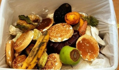 This Supermarket Runs on Its Own Food Waste! | Elevator Pitch: Education for Sustainability | Scoop.it
