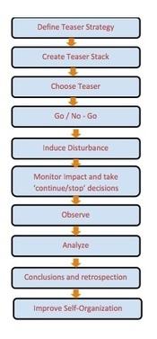 Achieving Self-Organized Teams Using Disturbance Strategy | Coaching Teacher Leaders | Scoop.it