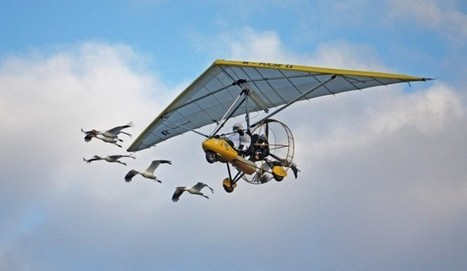 Operation Migration aircraft adjusts to FAA regulations - Wisconsin State Journal   Light Sport Aircraft   Scoop.it