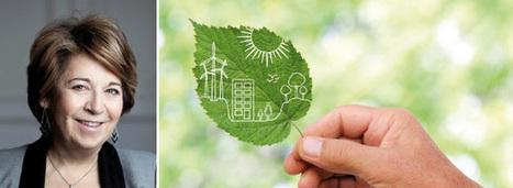 EnR et maîtrise de l'énergie : des actions locales pour une solution globale | Home | Scoop.it
