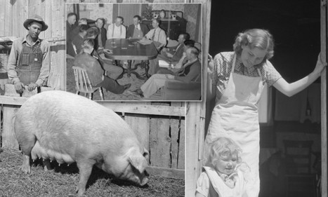 Utah rising from her knees: Poignant black and white photographs document success stories of farmers left destitute by Great Depression who fought to get back on their feet | British Genealogy | Scoop.it