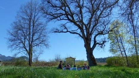 Dans la Drôme, cette école participative forme les jeunes générations à l'écologie | Innovation sociale | Scoop.it