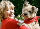 Bunny's Blog: Frugal Dougal Crosses the Rainbow Bridge | Pet News | Scoop.it