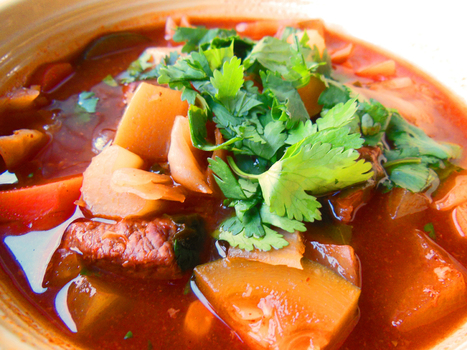 8 Cup Giddyup — Yucatan-Style Beef Vegetable Soup Recipe | Annie Haven | Haven Brand | Scoop.it