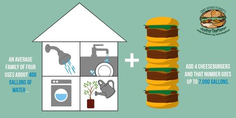 You Can Save Over 200,000 Gallons of Water a Year With One Simple Choice | Plant Based Transitions | Scoop.it