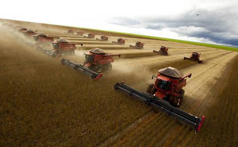 Avanço do agronegócio no Matopiba puxa devastação do cerrado | Lucas do Rio Verde | Scoop.it