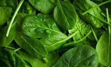 8 Benefits of Spinach: The First Superfood | Liquid Health News | Scoop.it
