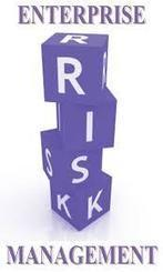 Integrating Risk Management into Strategic Planning | Strategic Intelligence | Scoop.it