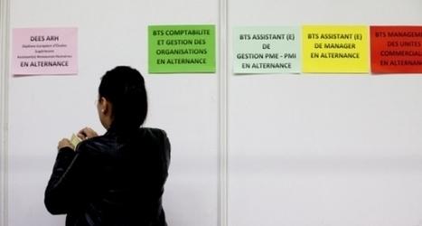 Réforme de la taxe d'apprentissage : l'enseignement supérieur en danger ? | Enseignement Supérieur et Recherche en France | Scoop.it