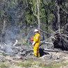 NPWS fire management