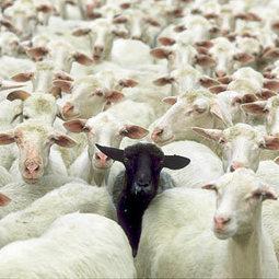 """Europa es la """"oveja negra"""" de la inversión publicitaria global   Un milimetro más allá   Scoop.it"""