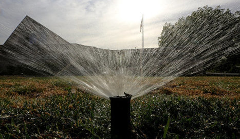 After Taking a Shower, Shower Your Lawn?   The EcoPlum Daily   Scoop.it