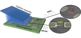 Quand les nanofils trouvent leur place | Actualité des laboratoires du CNRS en Midi-Pyrénées | Scoop.it