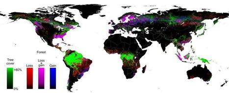 UMD Leads 1st Local-to-Global Mapping of Forest | Zero Footprint | Scoop.it