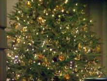 NYC FD Called A Bunch Of Grinches For Removing Live Xmas Trees From Lobbies - CBS New York | Christmas Trees and More | Scoop.it