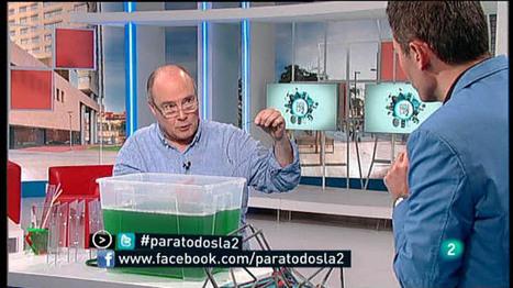 Para Todos La 2 -  Entrevista Anton Aubanell, enseñar matemáticas, Para todos La 2 - RTVE.es A la Carta | Catywo | Scoop.it