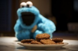 Incorporar el aviso de la Ley de cookies en tu WordPress en 5 pasos | CONCEPTO 05 | Social Media | Scoop.it