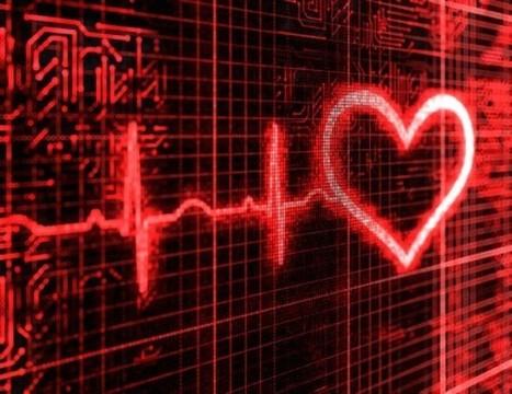 Desarrollan el primer corazón virtual completo en 3D | Tecnología y Educación | Scoop.it