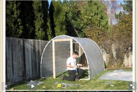 Make Your Own Greenhouse | Urban Greens Watch | Scoop.it