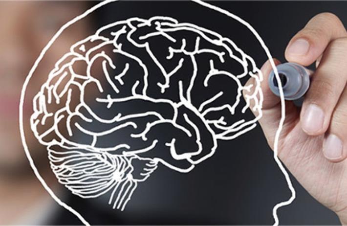 Comment optimiser l'expérience utilisateur grâce à la neuroscience ? | MOOC Francophone | Scoop.it