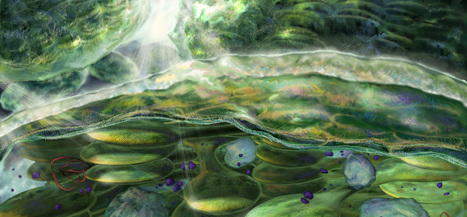 Stroma Studios - Scientific Animation. Interactive Development   Science Data Vizualisation   Scoop.it