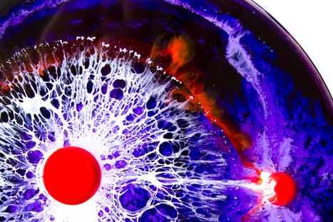 Stunning Paintings That Use Petri Dishes as Canvases | Strange days indeed... | Scoop.it