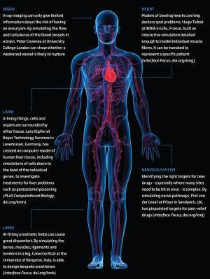 Virtual body double gets ill so you don't have to - tech - 28 February 2013 - New Scientist | cognition | Scoop.it
