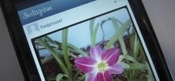 Instagram : que vont changer pour vous les nouvelles conditions d'utilisation ? | Libertés Numériques | Scoop.it