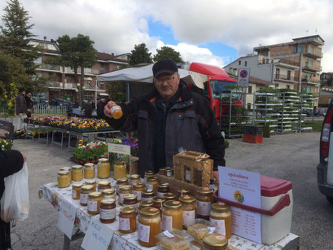Life in Southern Le Marche | Markets | Le Marche another Italy | Scoop.it