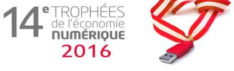 Trophées de l'Economie Numérique 2016 | CCI du Tarn | Scoop.it