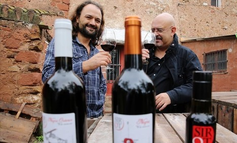 ¿Vino de cereza? | De l'Hort a la Biblioteca | Scoop.it