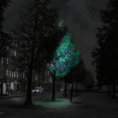 Movie: swap streetlights with luminous trees - Daan Roosegaarde | Connecting Cities | Scoop.it