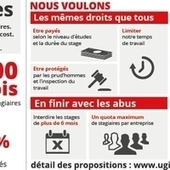 Stages: stop aux abus (pétition) | 16s3d: Bestioles, opinions & pétitions | Scoop.it