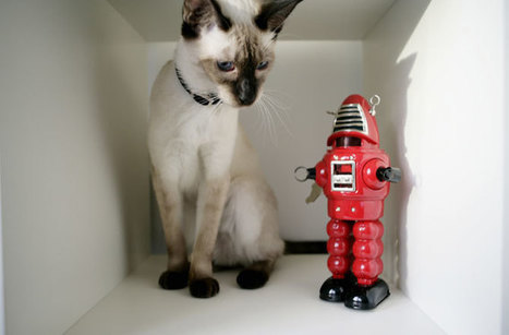 Hairy Animals Teach Us How to Keep Robots Clean | Biomimicry | Scoop.it