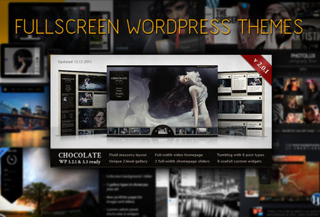 10 Fullscreen Wordpress Themes for Photography and Portfolios | Everything Photographic | Scoop.it