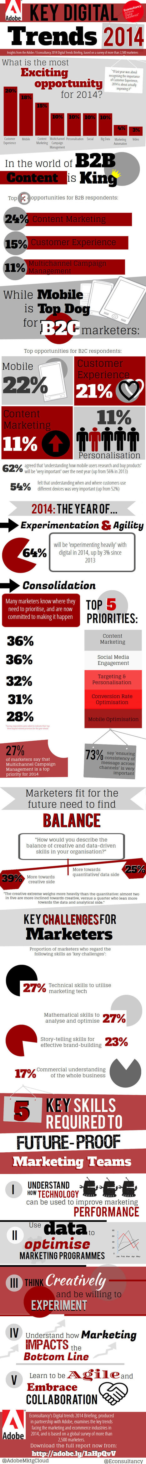 Customer Experience and Content Marketing Top 2014 Digital Trends - Digital Europe   Customer   Scoop.it