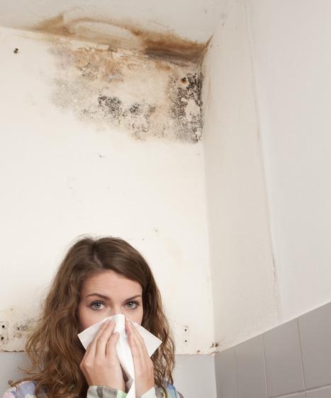 Renforcer la prévention contre le développement des moisissures dans les bâtiments et leurs conséquences sur la santé des populations | Elan Bâtisseur | Scoop.it