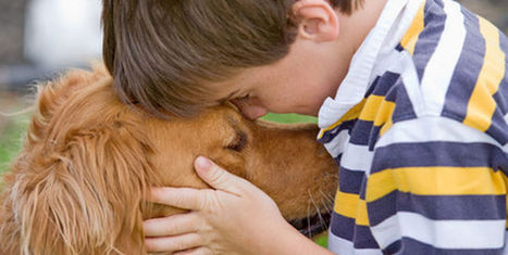 Cómo superar la pérdida de una mascota | Amigos Peludines | Leishmaniosis | Scoop.it
