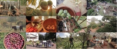 Inhabit: A Permaculture Perspective (trailer) | Right Livelihood: Growing Food | Scoop.it