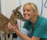 10 Mitos sobre estudiar Medicina Veterinaria » Listeilor.com | veterinaria | Scoop.it